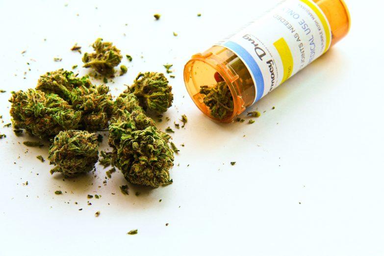 Medical marijuana questions tallahassee